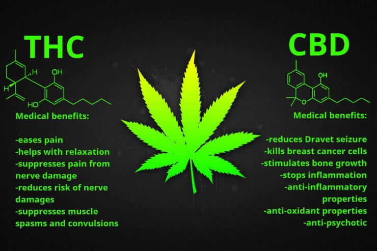benefits-thc-cbd